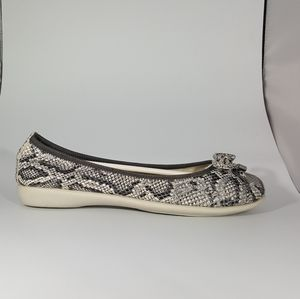 The Flexx Gray & Black Snake on Suede Ballet Flat